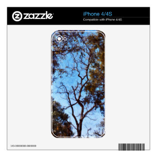 Tree and blue sky decals for the iPhone 4S