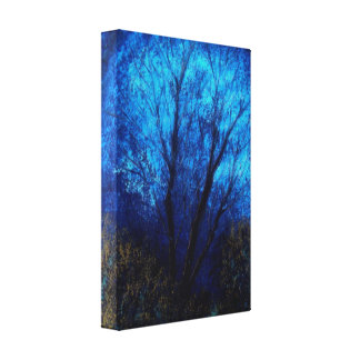 Tree and Blue Sky, Evening. Canvas Print
