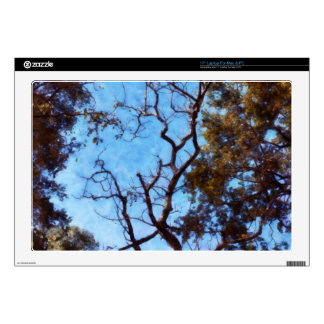 Tree and blue sky laptop skins