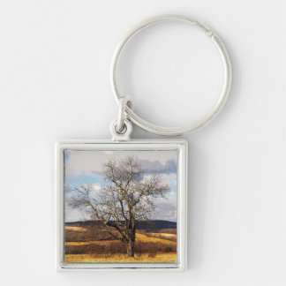 Tree and Distant Hills Key Chain