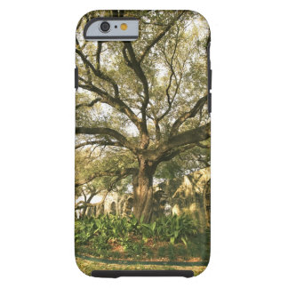 Tree and landscaping in San Antonio, Texas Tough iPhone 6 Case