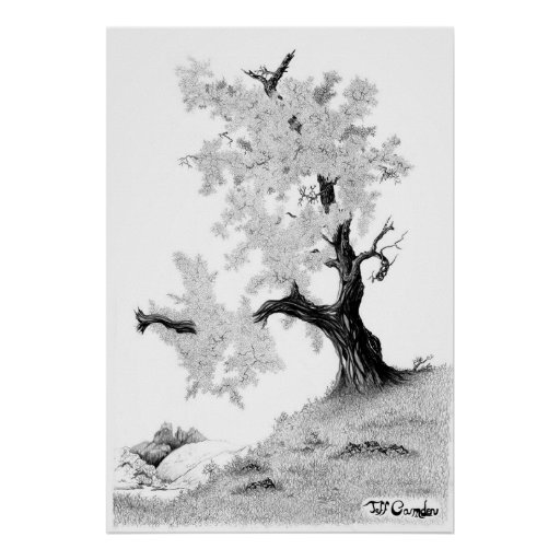 """""""Tree and Mountain,"""" by Jeff Camden Poster"""
