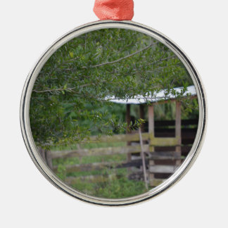 tree and old barn florida photo metal ornament