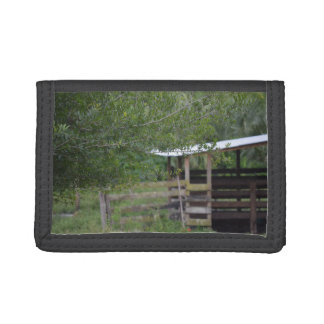 tree and old barn florida photo tri-fold wallet