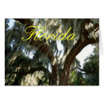 Tree and Spanish Moss Greeting Cards