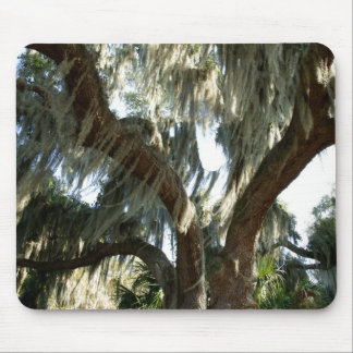 Tree and Spanish Moss Mouse Pad