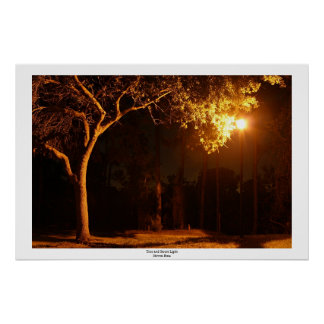 Tree and Street Light Poster