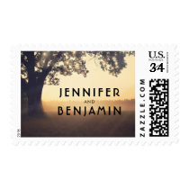 Tree and String Lights Rustic Dream Wedding Postage