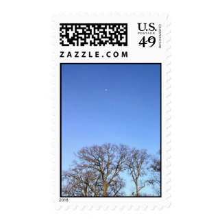 Tree and the Moon Postage Stamp