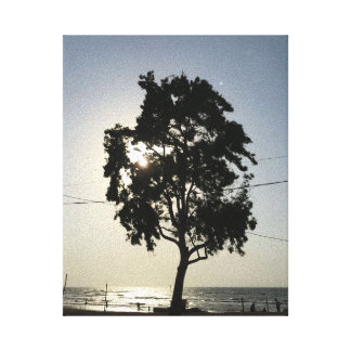 Tree and the sea wrapped canvas
