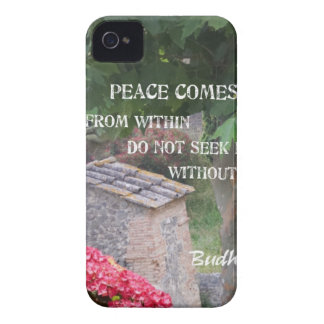 Tree and wall with Budha message iPhone 4 Cover