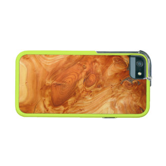 Tree Annual Rings Phone SE/5/5s Case