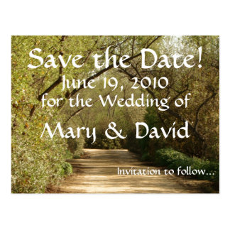 Tree Arch Path Save the Date Postcard
