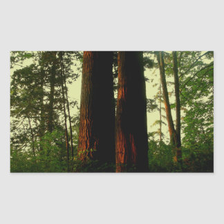 Tree Art Rectangular Sticker