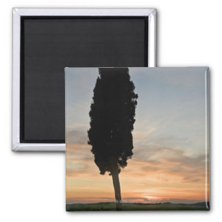 Tree at dusk near San Quirico d'Orcia, Tuscany 2 Inch Square Magnet