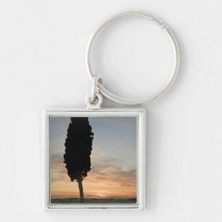 Tree at dusk near San Quirico d'Orcia, Tuscany Keychain