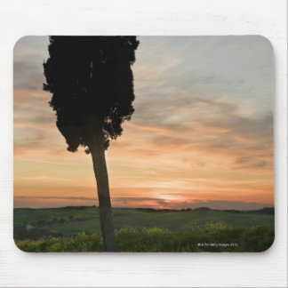 Tree at dusk near San Quirico d'Orcia, Tuscany Mouse Pad