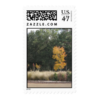 Tree at Sholom Park Postage Stamp