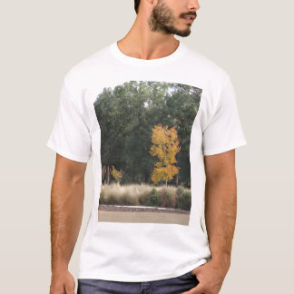 Tree at Sholom Park T-Shirt