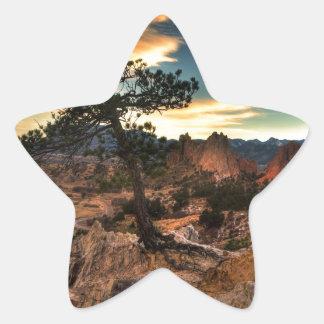 Tree at Sunrise Star Sticker