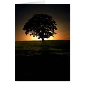 Tree at Sunset. Card by cARTerART.