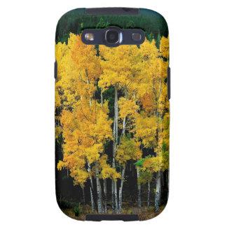 Tree Autumn Birch Galaxy S3 Case
