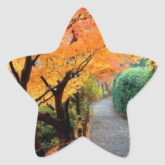 Tree Autumn Colors Japan Star Stickers