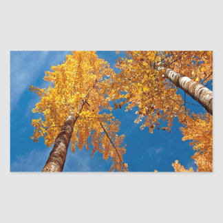 Tree Autums Woods Sky Rectangular Sticker