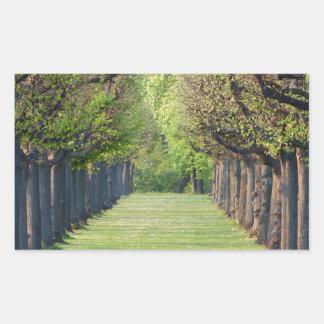 Tree Avenue Rectangular Sticker