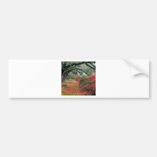 Tree Azaleas And Live Oaks Plantation Bumper Sticker