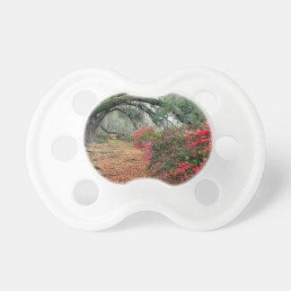 Tree Azaleas And Live Oaks Plantation Pacifier