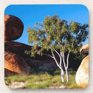 Tree Balancing Boulder Australia Coaster