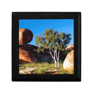 Tree Balancing Boulder Australia Gift Boxes