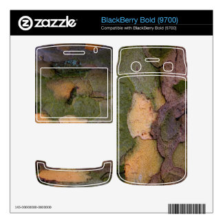 Tree bark Blackberry Bold skin