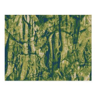 Tree bark camouflage pattern postcard