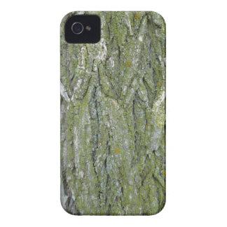 Tree Bark iPhone 4 Covers