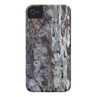 Tree bark iPhone 4 cover