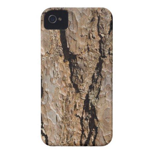 TREE BARK iPhone 4 Case-Mate CASE