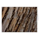 Tree Bark I Natural Abstract Textured Design Card