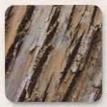Tree Bark I Natural Abstract Textured Design Coaster