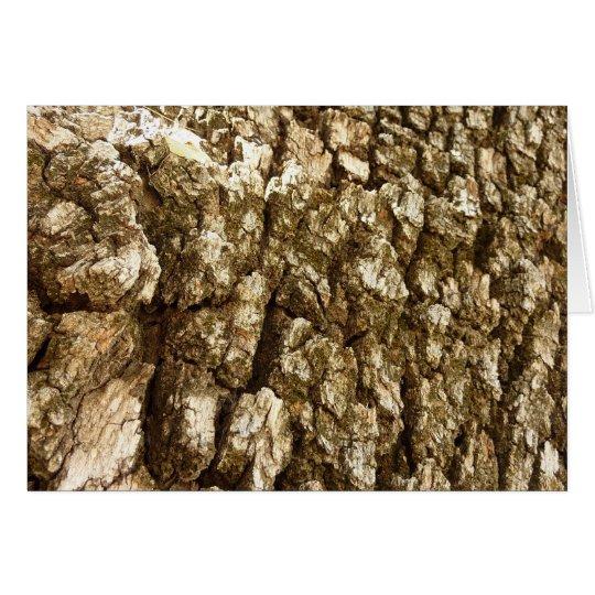 Tree Bark II Natural Abstract Textured Design Card