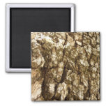 Tree Bark II Natural Abstract Textured Design Magnet
