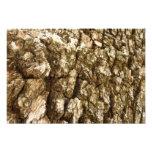 Tree Bark II Natural Abstract Textured Design Photo Print