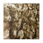 Tree Bark II Natural Abstract Textured Design Tile