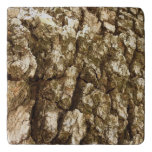 Tree Bark II Natural Abstract Textured Design Trivet