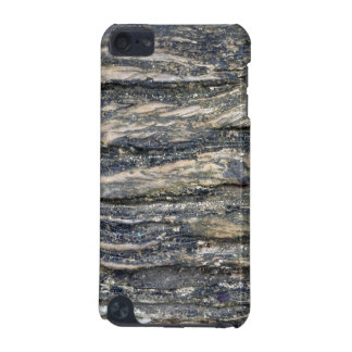 tree bark iPod touch (5th generation) cases