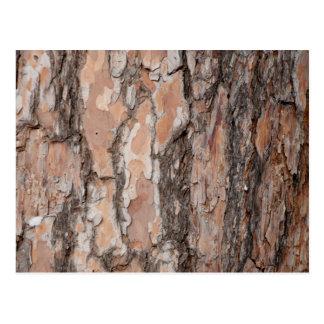 Tree Bark Pattern Postcard