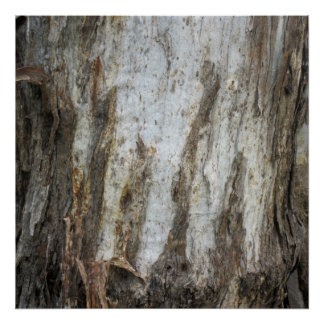 Tree Bark Pattern Print 5