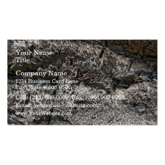 Tree bark patterns detailed view business card