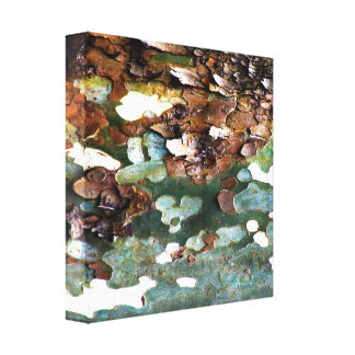 Tree Bark Texture Canvas Gallery Wrapped Canvas